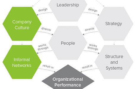 Loom™ Organizational Health